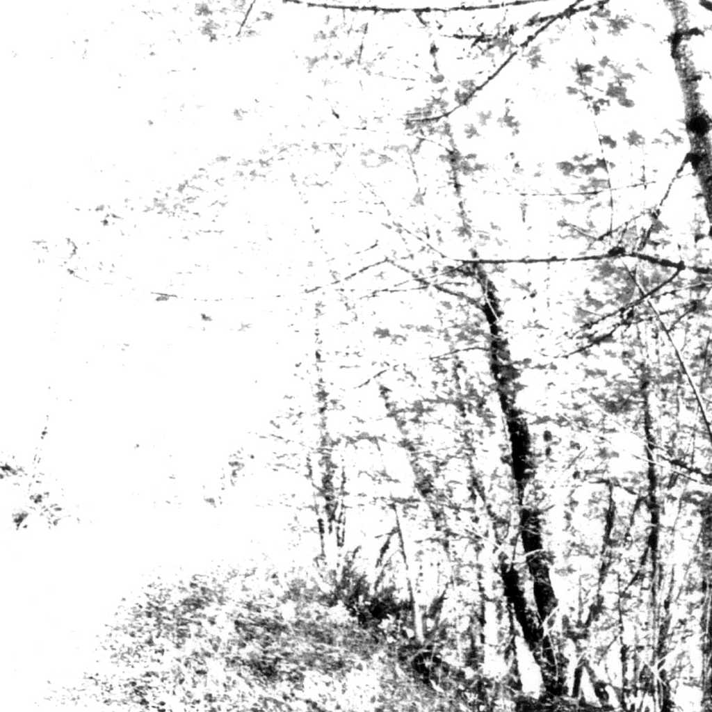 Agalloch - The White EP